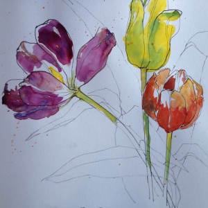 End of the tulips